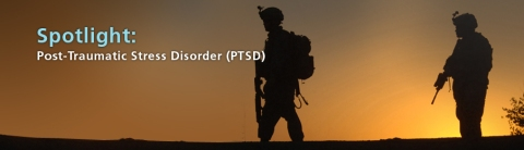 ptsd header - The Veterans Health Research Institute